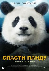 Фильм Спасти панду (2020)